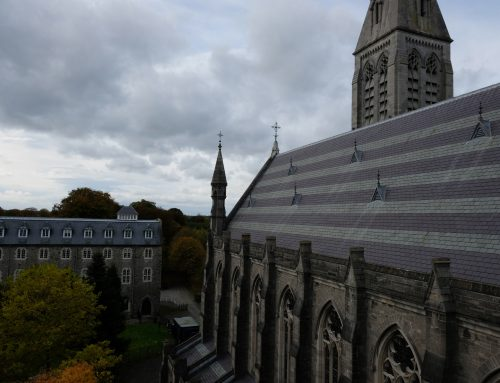 St. Patrick's College Maynooth, Roof Refurbishment